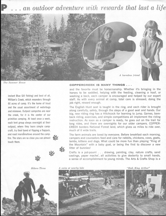 The first brochure; page 3