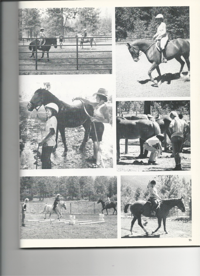Horses 1996 page 2-2